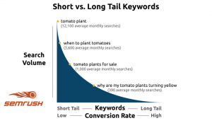SEO long-tail keywords, search volume, and conversion rates.